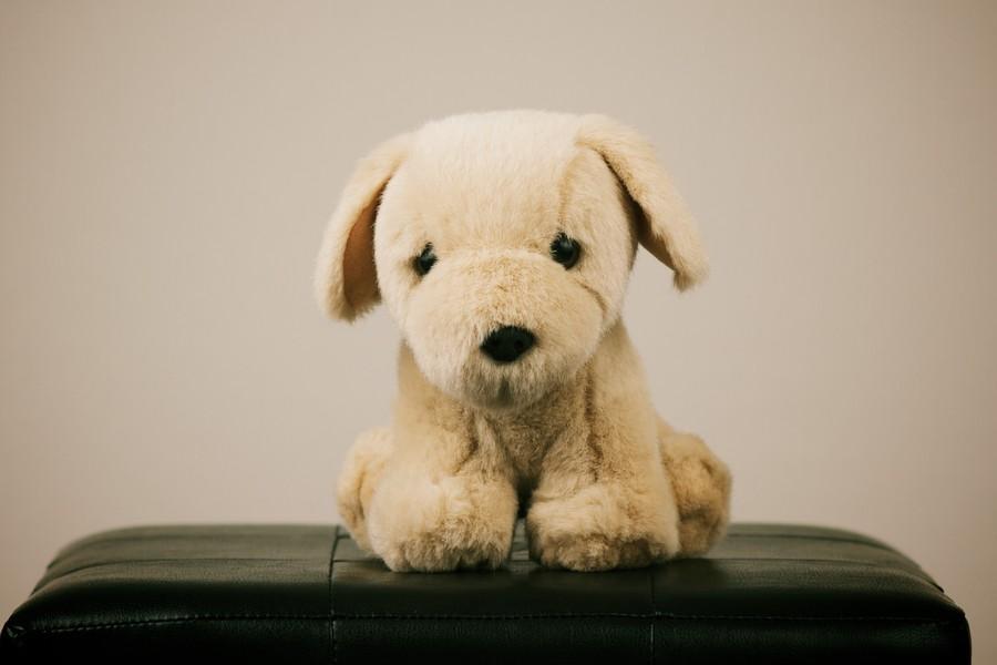 10. Почистить старые плюшевые игрушки. Положите любимого песика, мишку или кто там у вас в бумажный