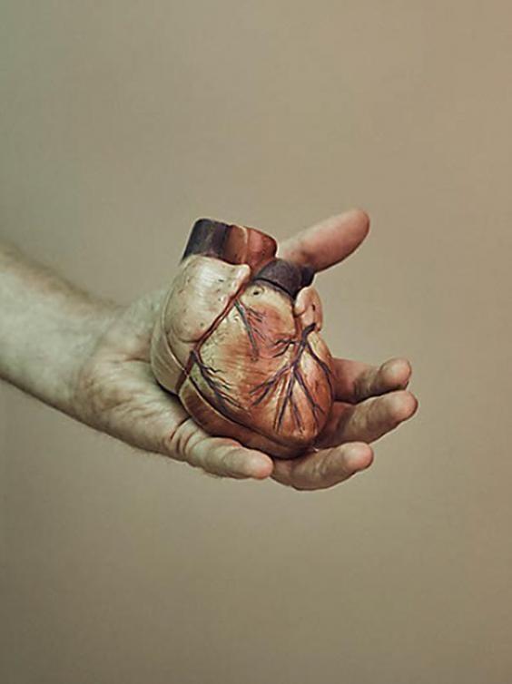 Первым делом он решил получить 3D-модель сердца с помощью компьютерной томографии и 3D-моделиров