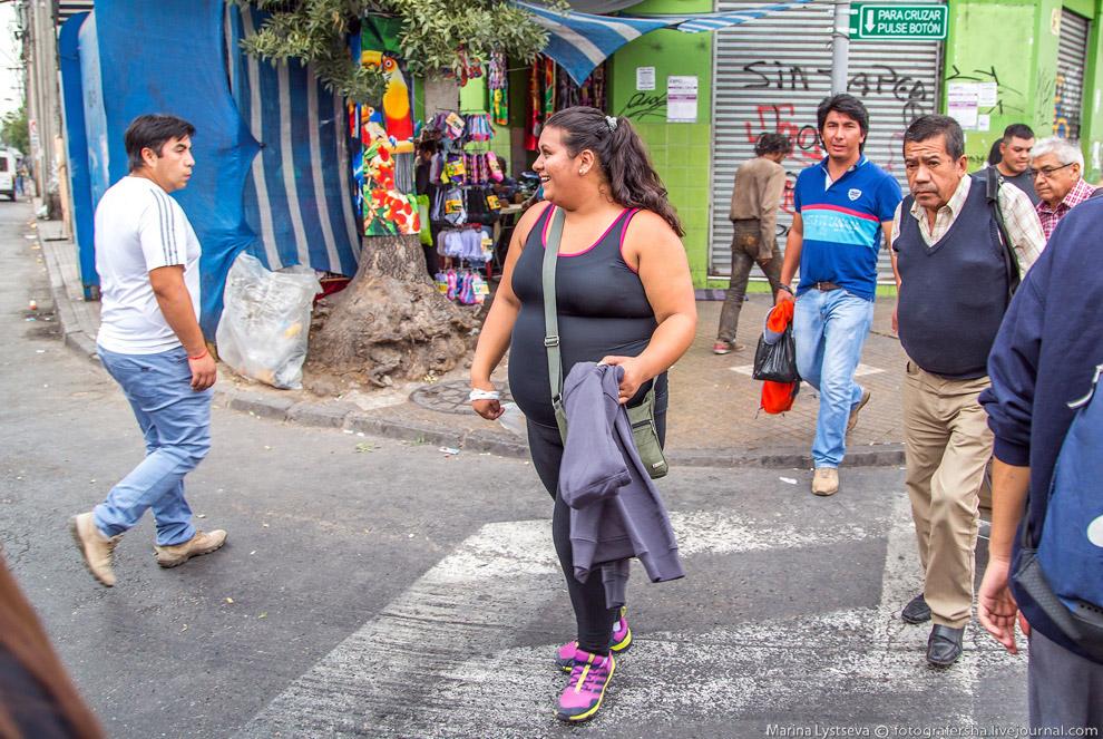 фото простых чилийцев меня посажены крокусы