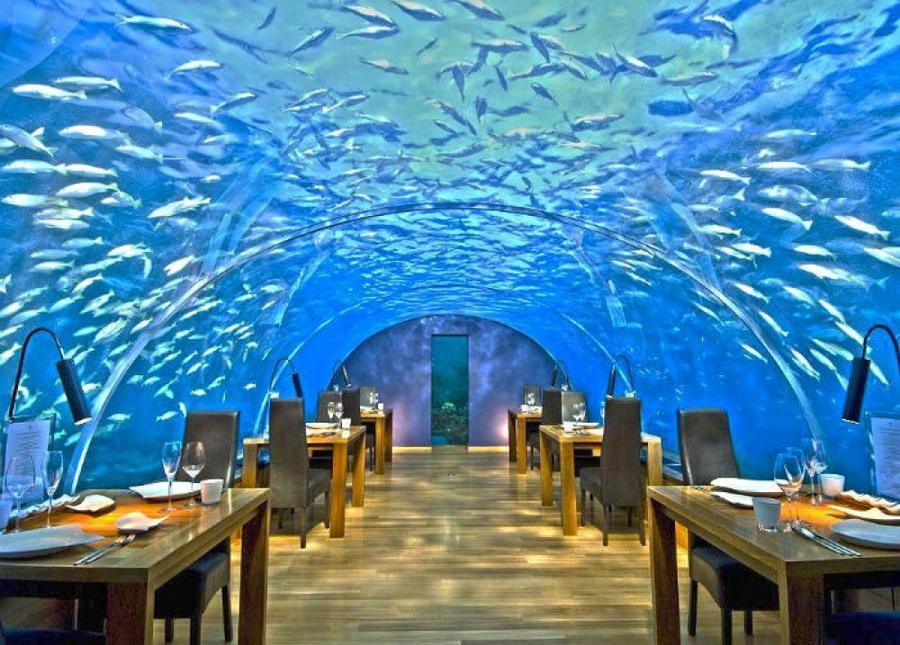 3. Ithaa Undersea Restaurant, Мальдивы Одновременно в этом подводном ресторане может находиться всег