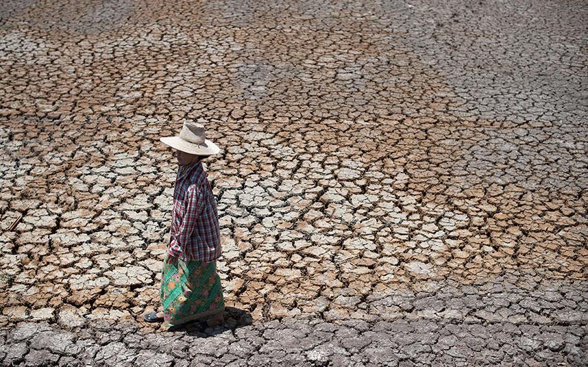 1. Вот так выглядит пересохшие поля в провинции Супханбури, которая находится в двух часах езда от Б