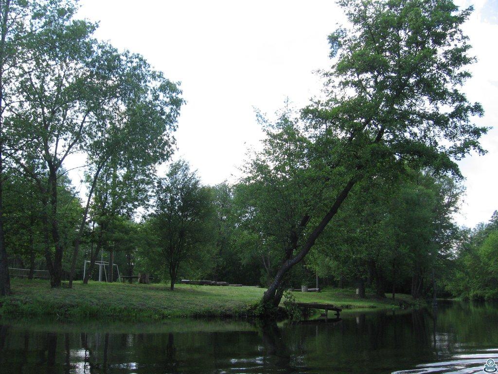 Место отдыха у реки