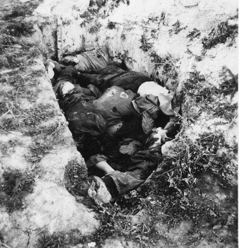 Красноарм. и мирные жители, расстрелянные немцами под Минском. 1941.jpg