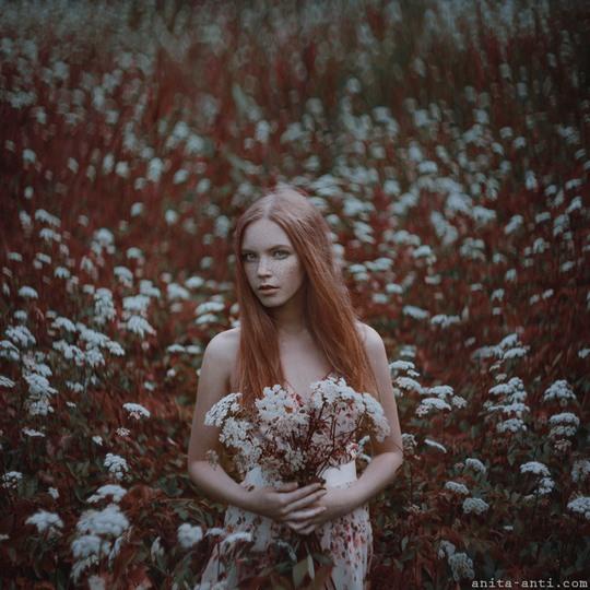Creative Photography by Anita Anti