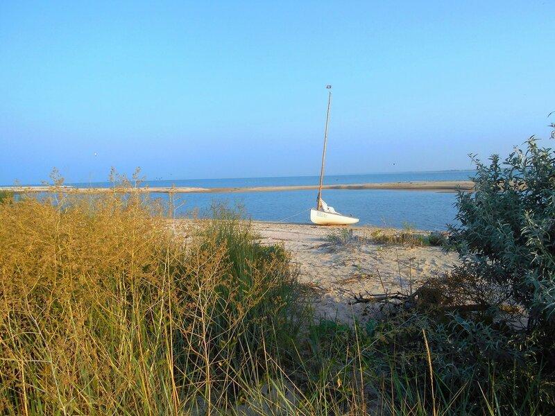 Утро, яхта, берег бухты ... DSCN7455.JPG