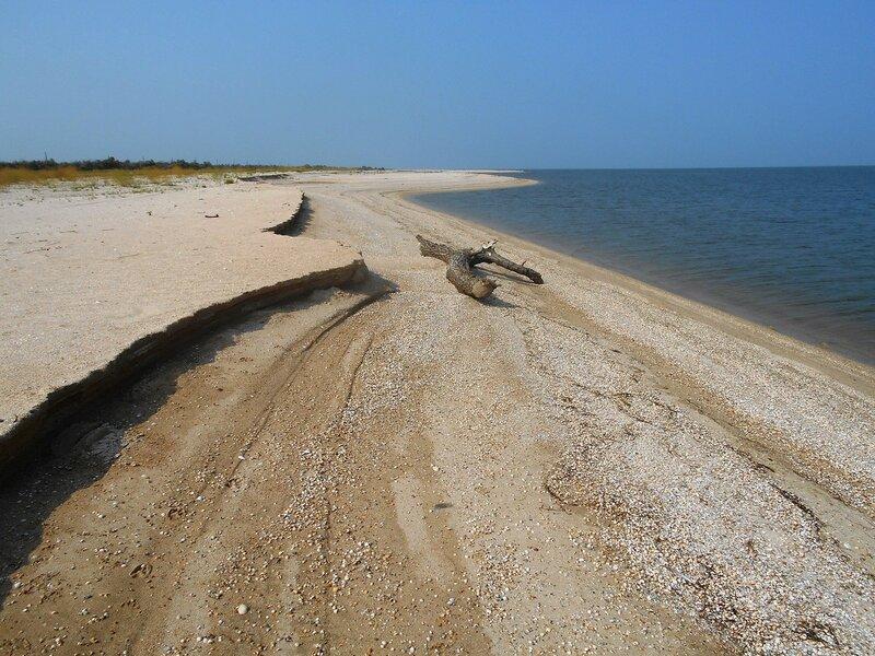 Берег песчаный с бревном ... DSCN7515.JPG