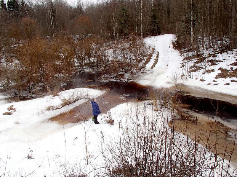 ручей у красницы и реки суйда в марте