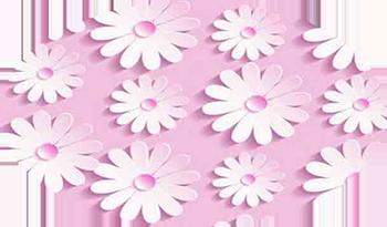 Белые-цветы-на-розовом.png