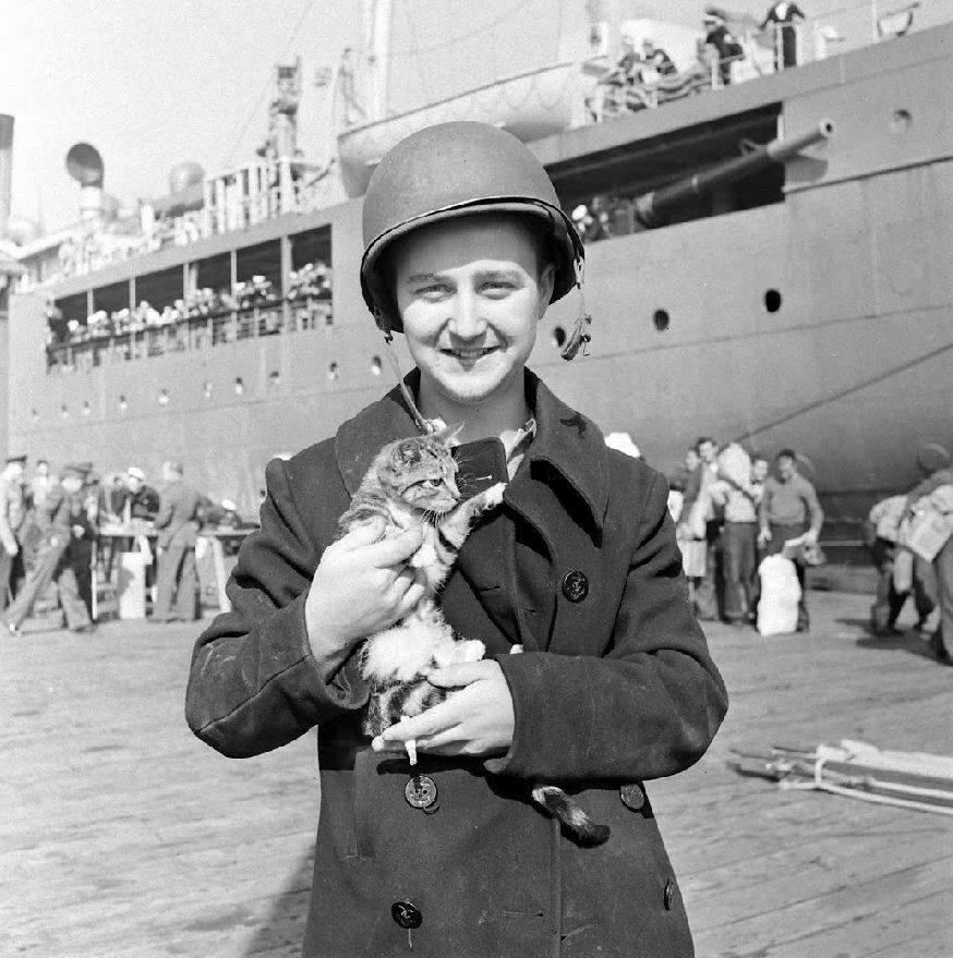 Survivants des USS Blue (DD-387) & HMAS Canberra - 1942