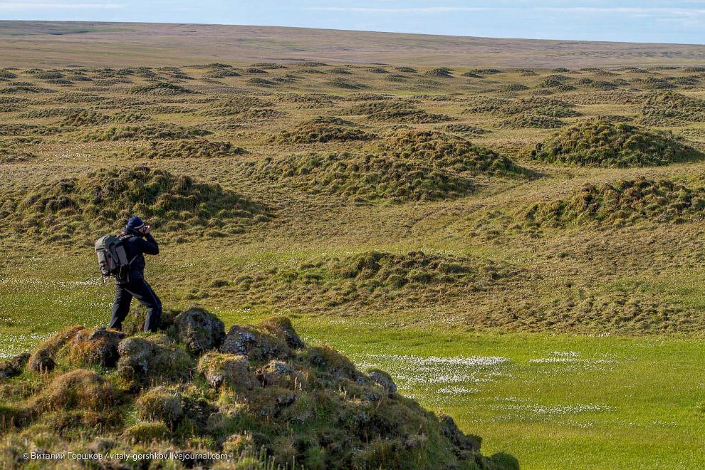 3. Небольшой восьмиколесный вездеходик с геологической базы позволял обследовать тундру на знач