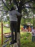 Всемирный день охраны окружающей среды в Химкинском благочинии