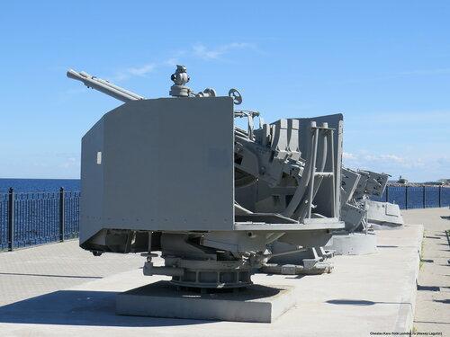 37 мм В-11 _102