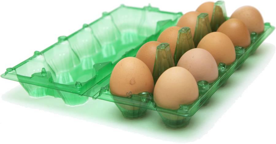 Самый безопасный способ хранения яиц