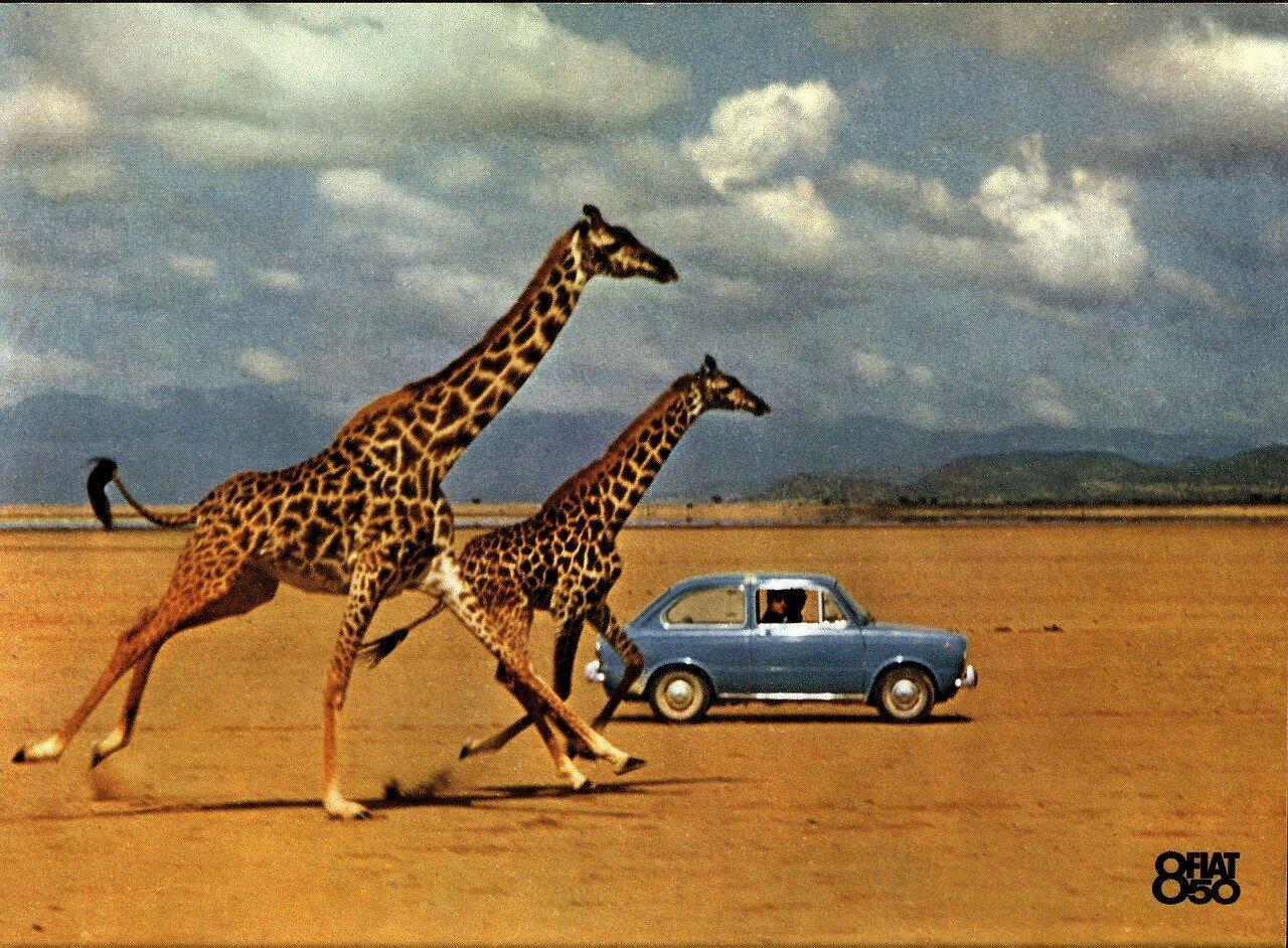 Fiat-1964-0001.jpg