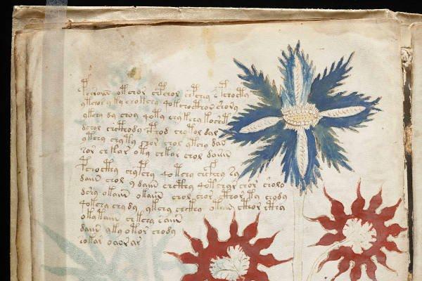 Российские ученые раскрыли 600-летнюю тайну манускрипта Войнича