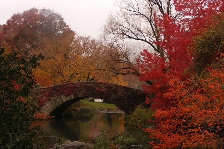 Красивейшие природные места до и после наступления осени