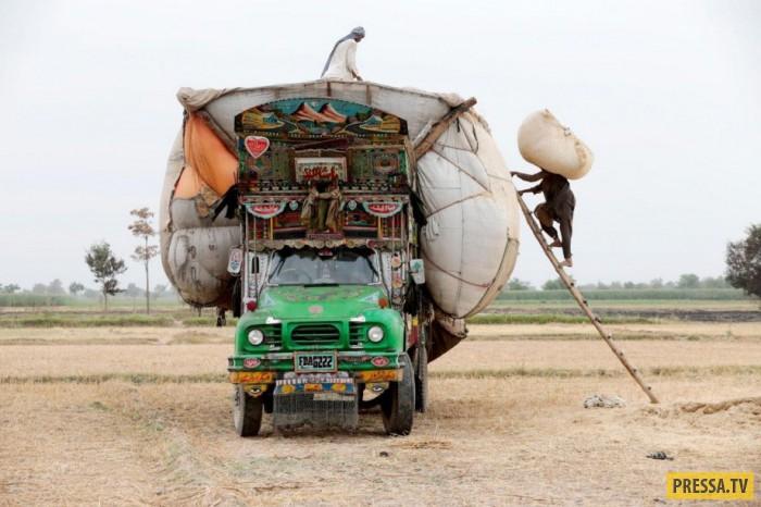 «Арт грузовики» Пакистана