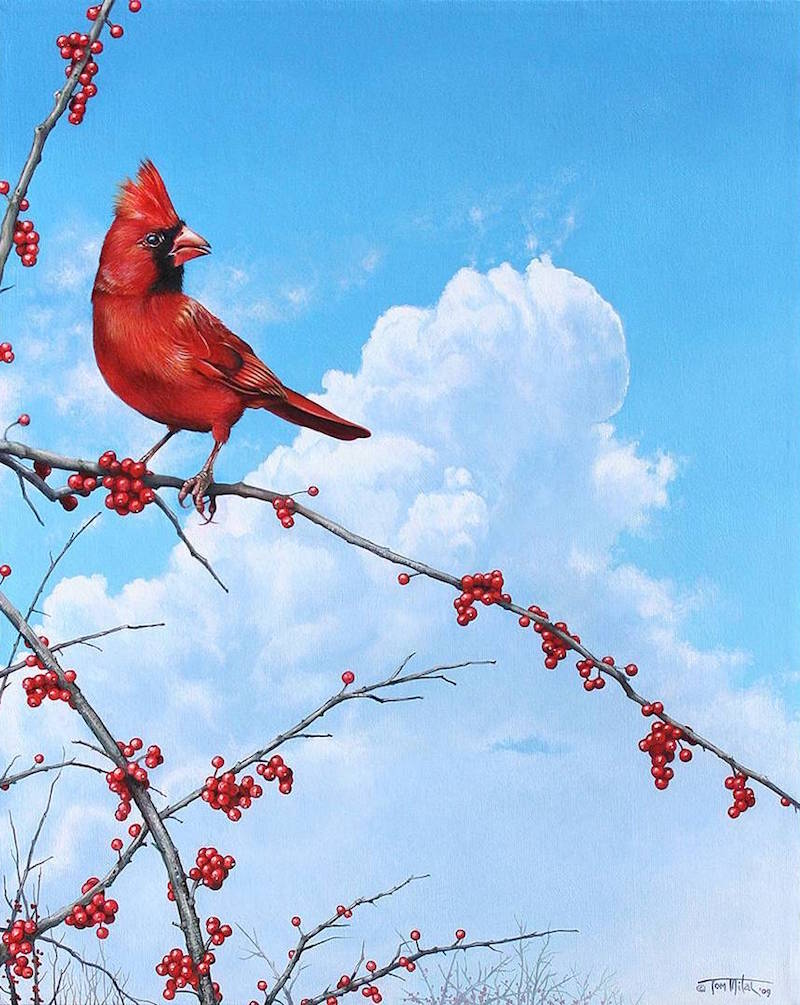 Oregon Birds Exquisitely Captured in Wildlife Art Paintings by Tom Mital