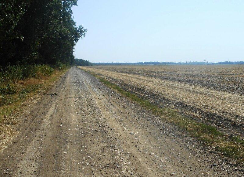 Дорога у поля убранного ... DSCN4020 - 01.JPG