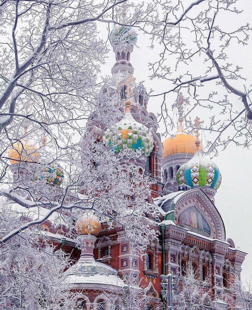 Богомяко Сергей - Спас на Крови. январь 2010.jpg