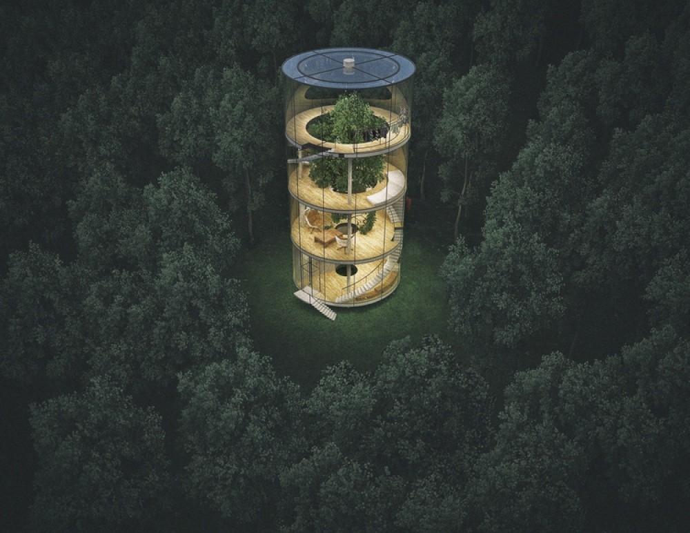 «Дерево в доме» — это уникальный проект, который позволяет почувствовать полное единение с природой.