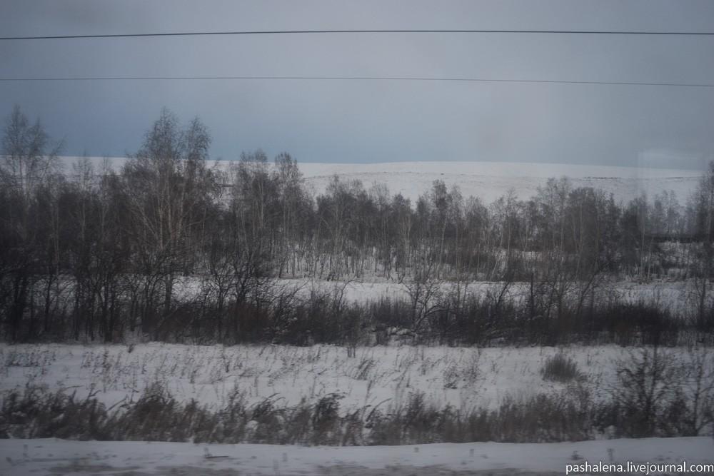 8. Виды из окна поезда будут — загляденье! Никаких гор и степей мы из окна не видели, а все 5000 км