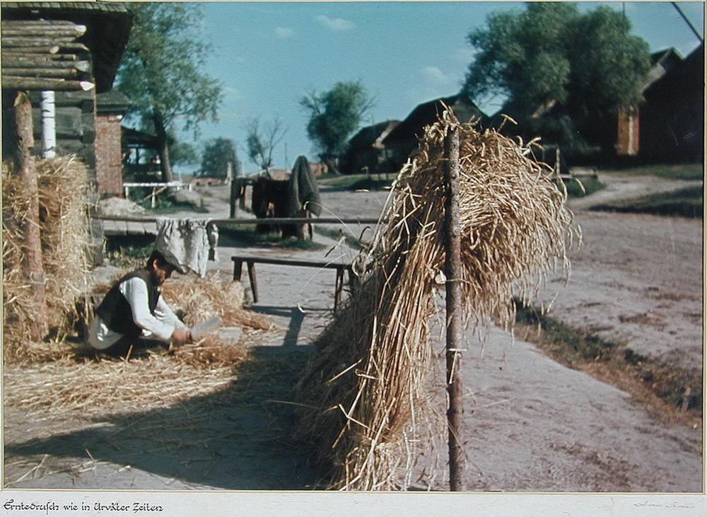 «Обмолот урожая как в стародавние времена». Калужская область В 1954 году Реммер открыл во Фленсбург