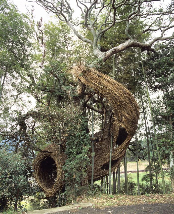Патрик Догерти (Patrick Dougherty) - автор более 150 удивительных масштабных инсталляций из ветвей п