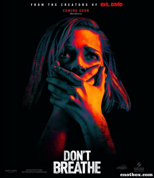 Не дыши / Don't Breathe (2016/WEBRip)