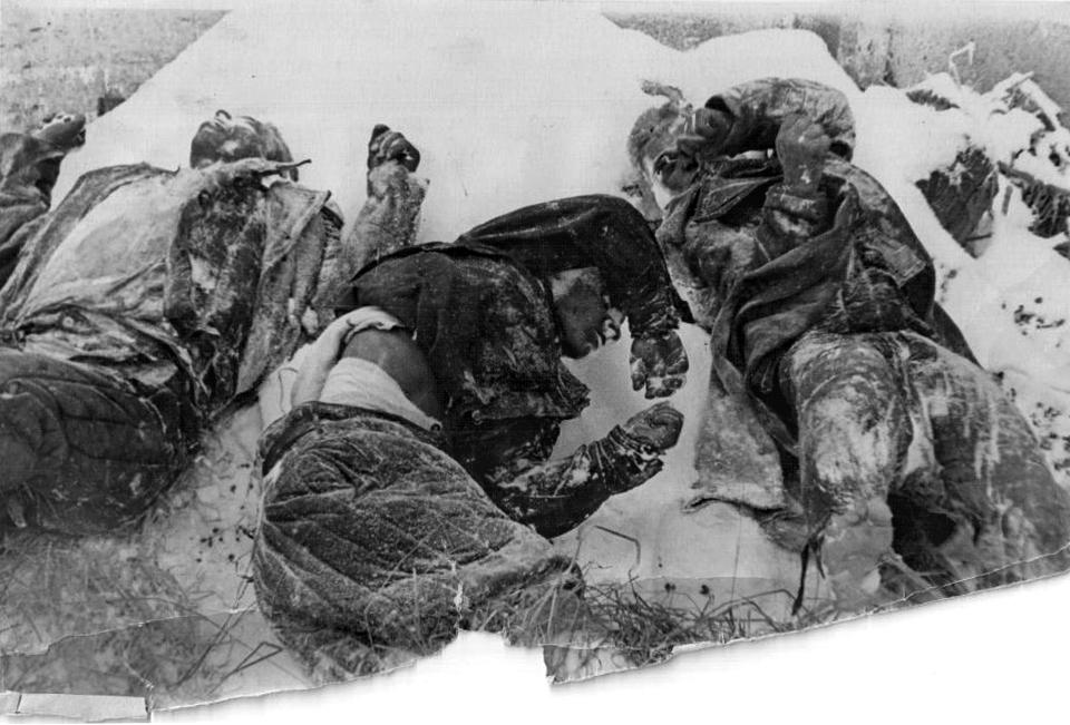 Расстрелянные военнопленные Красной Армии . Тихвин . ЛФ . Декабрь 19 , 1941.jpg