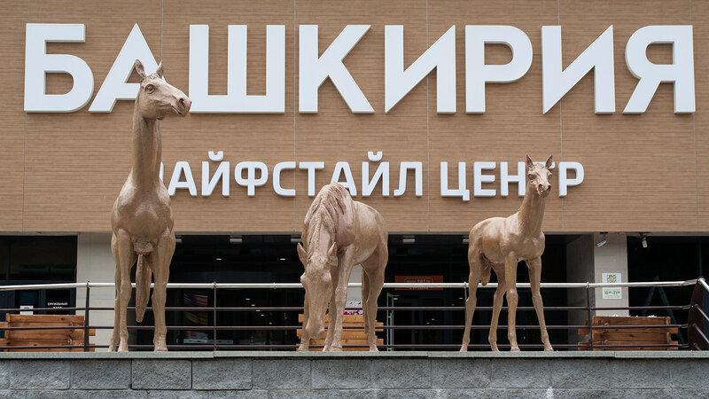 """Лошадиная семья перед лайфстайл центром """"Башкирия"""""""