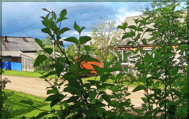 домик 2014 (2).jpg