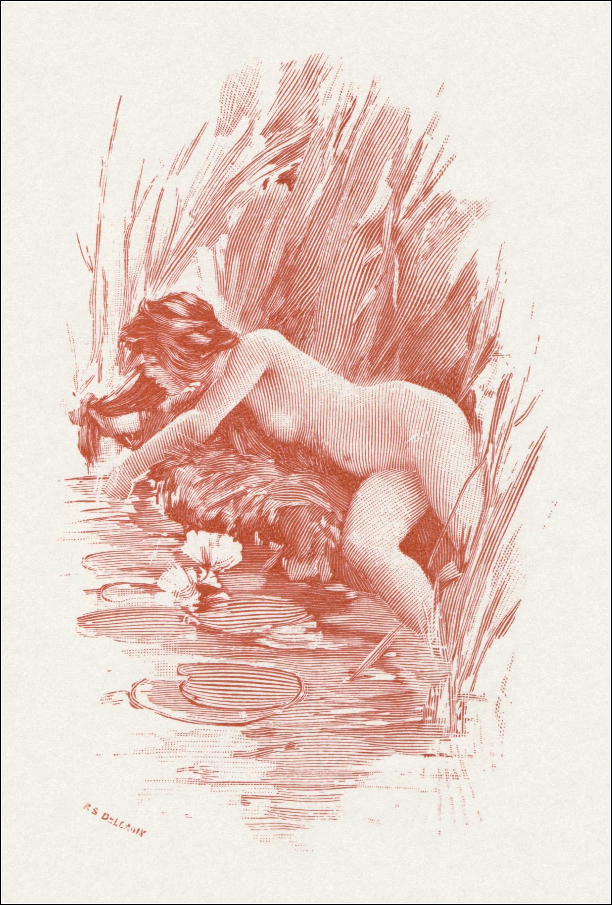 A.Calbet, Leda