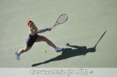 http://img-fotki.yandex.ru/get/12/274115119.b/0_10c48e_23ce10b9_orig.jpg