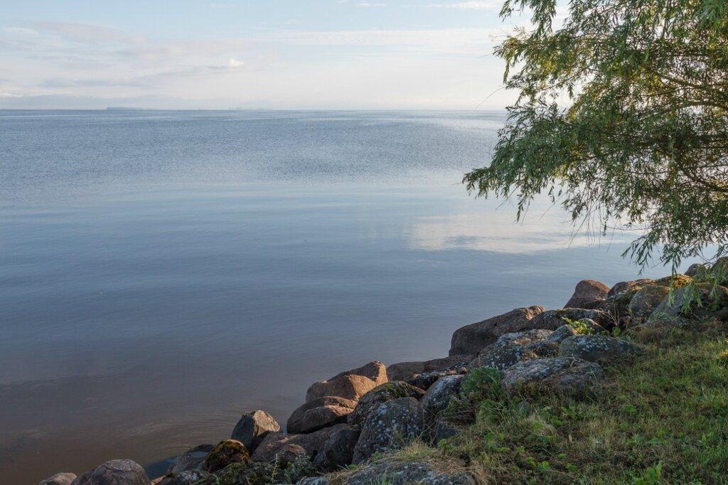 Утро, Псковское озеро