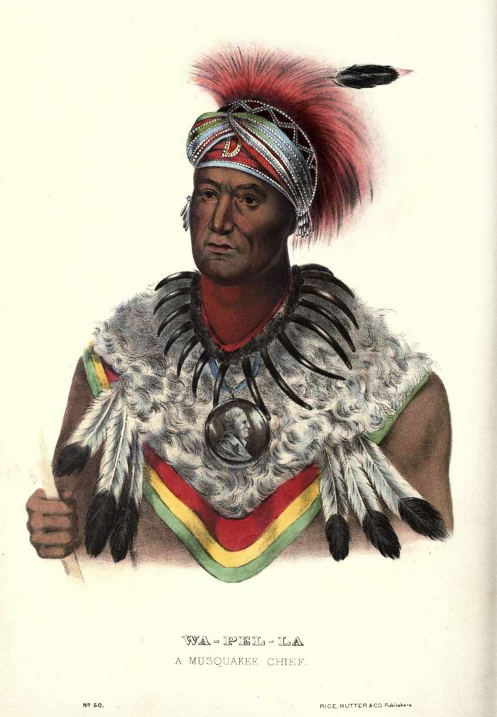 Вождь племени Musquakee