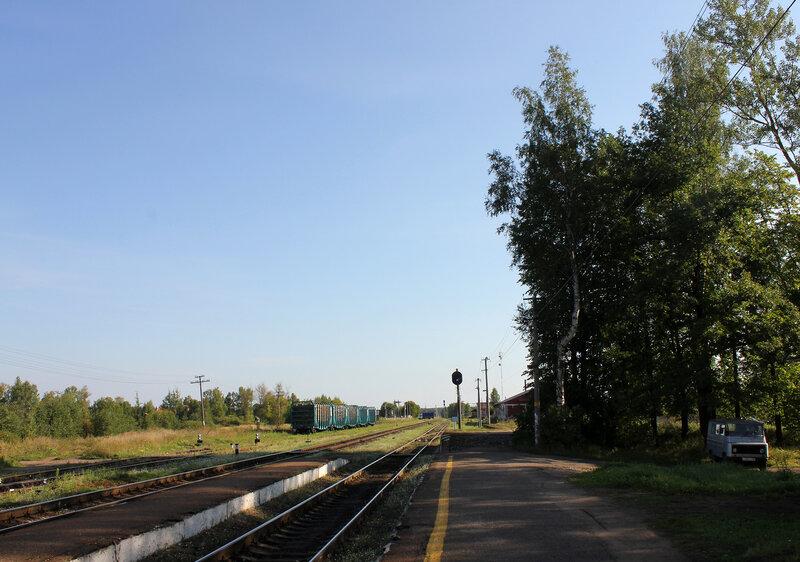 Станция Плюсса, вид на Питер