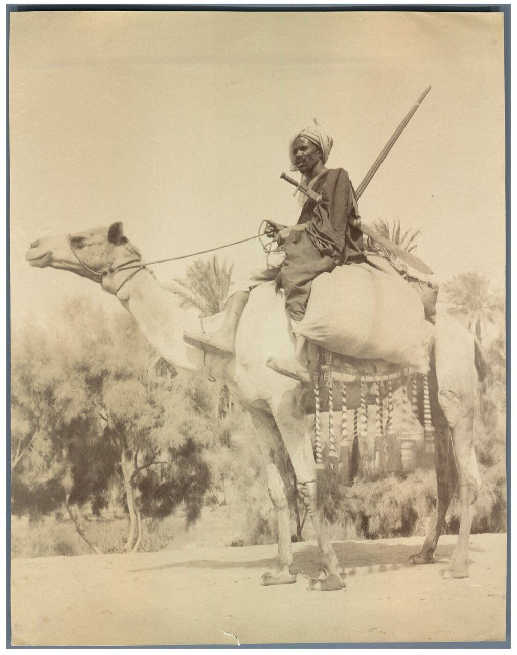 Араб на верблюде