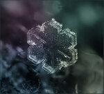 SnowFlake_13.jpg
