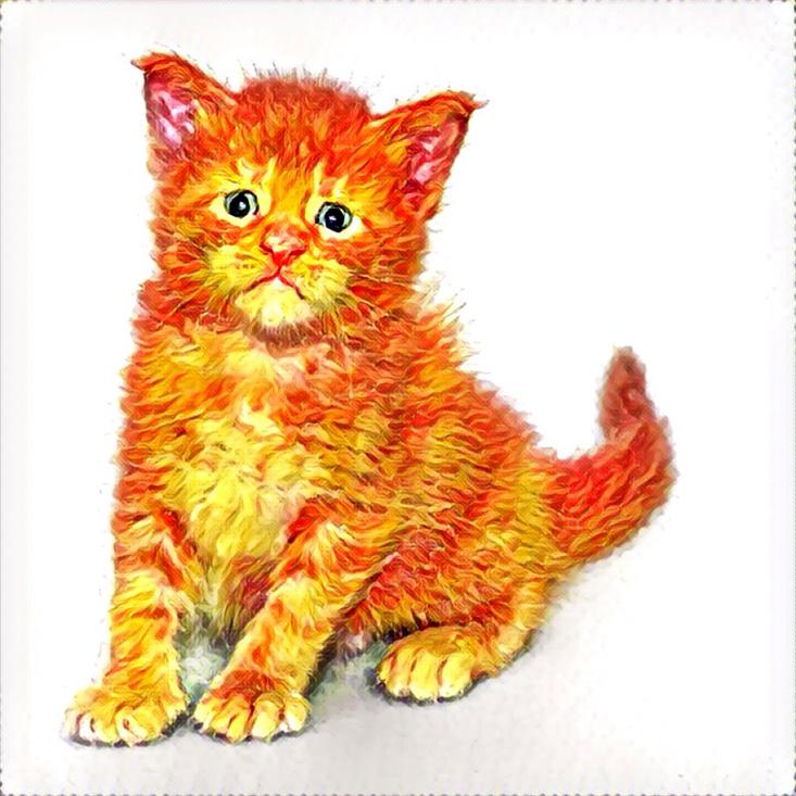 котенок призма