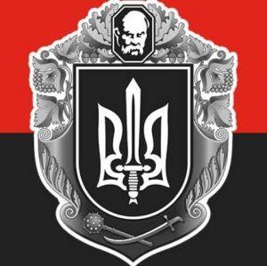 """""""ПС"""" Черкащины инициирует объявление недоверия действующей власти"""