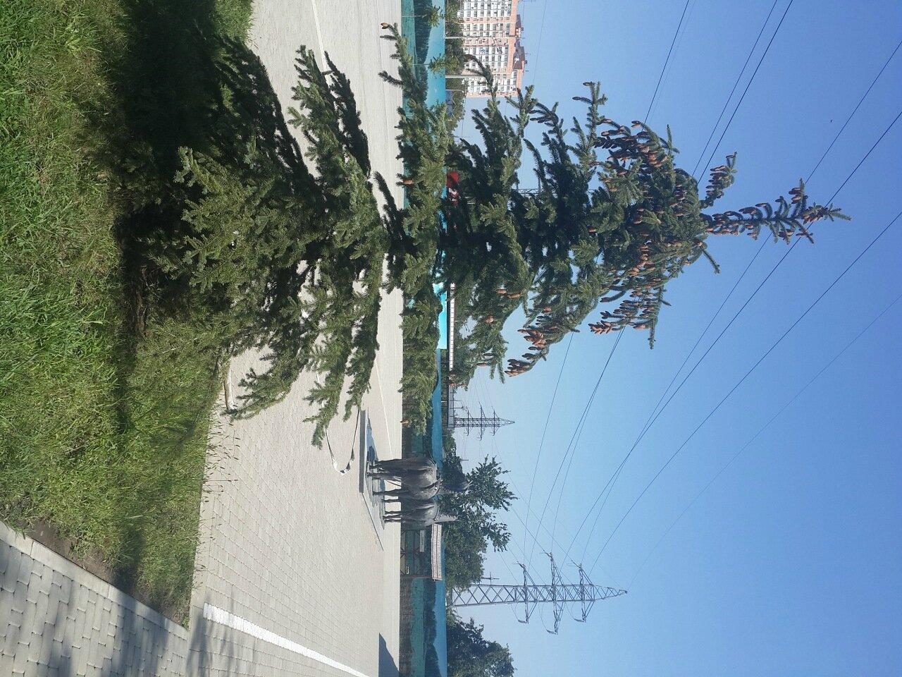 Пешие и велопрогулки по Краснодару - ищу компаньонов - Страница 6 0_828ab_360dea74_XXXL