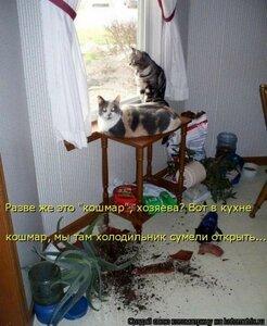 https://img-fotki.yandex.ru/get/120031/194408087.13/0_1373ad_47d0ff_M.jpg