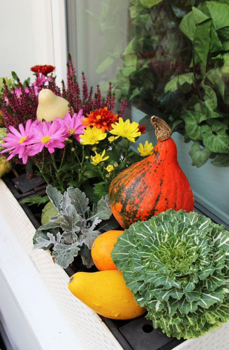 Подоконники с красивыми композициями Подоконники — довольно удобное место для размещения сложных цве