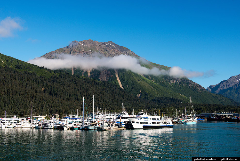 31. Национальный парк Кенай-Фьордс существует с 1980 года и создан в целях защиты арктических т