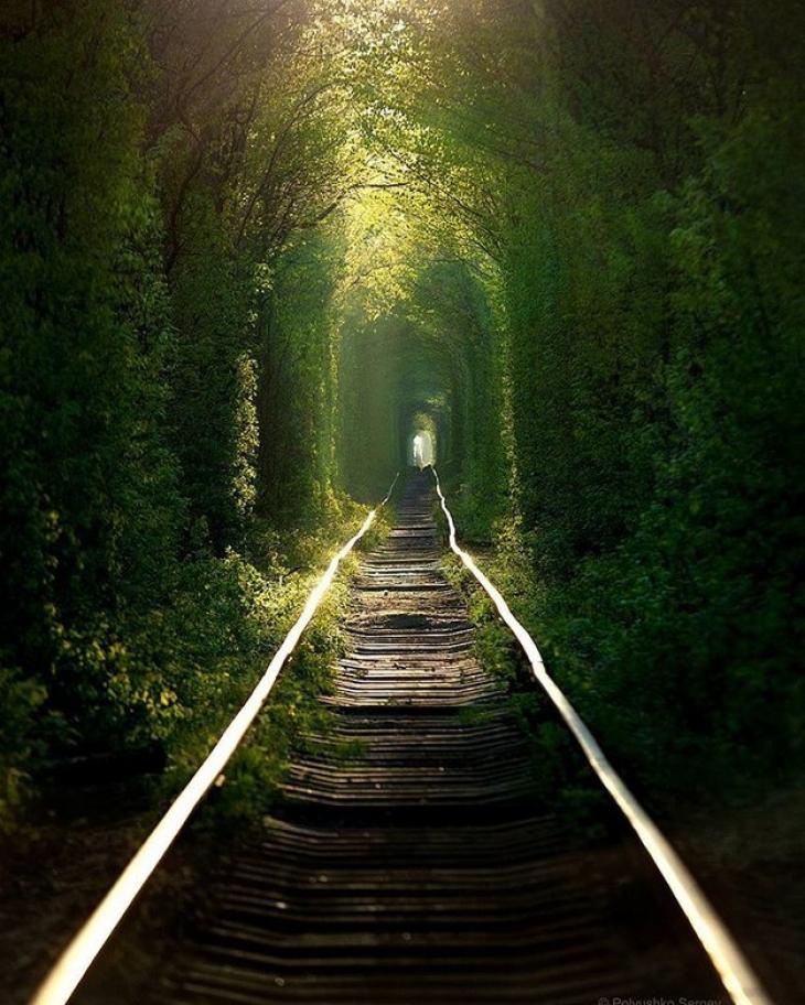 Ох уж эти украинские железные дороги, сколько в них неземного волшебства и магии! Вот так садишься с