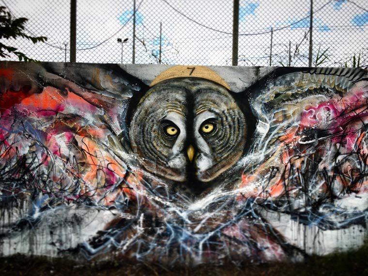Street Art Birds - The explosive and colorful creations by L7M