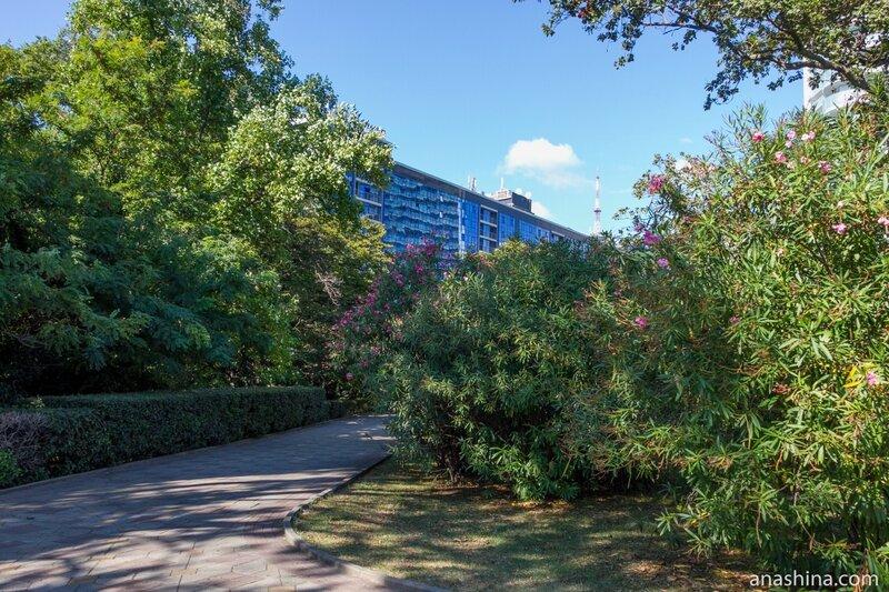 """Гостиница """"Маринс Парк Отель"""", Приморский парк, Сочи"""