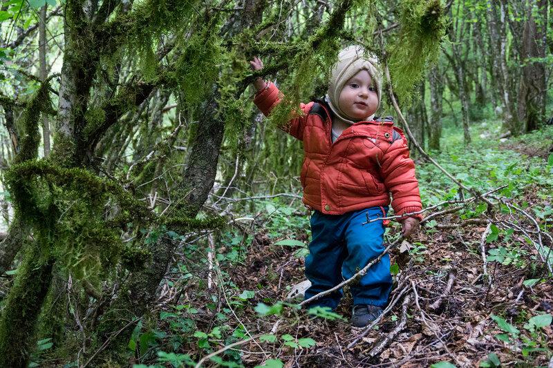 годовалый ребенок в лесу в походе