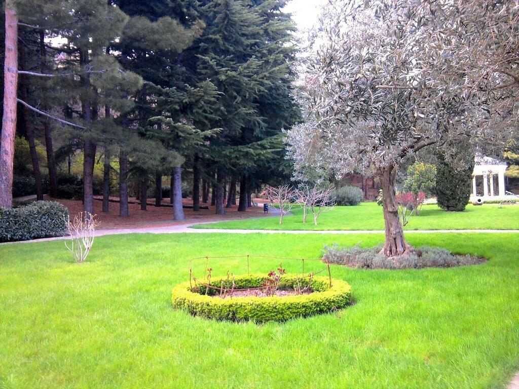 Оливковая роща, парк Парадиз или парк-памятник садово-паркового искусства